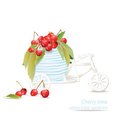 Mixed cherry in a decoration bycicle vector