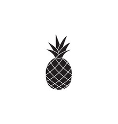 pineapple and ananas soldi icon healthy fruit vector image