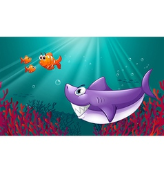 A big shark and three nemos under the sea vector