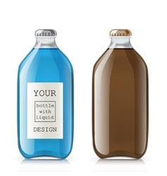 Set of glass bottles with a liquid vector