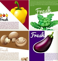 Infographic poster with fresh vegetables vector image