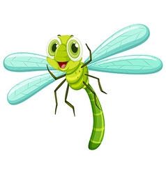 Dragonfly with happy face vector image vector image