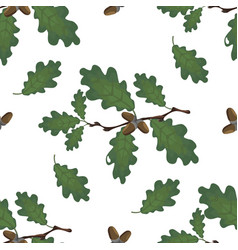 Green branches of oak with acorns and leaves vector
