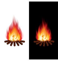 object bonfire vector image