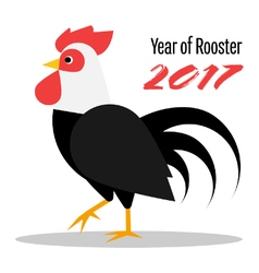 The year of rooster 2017 vector image