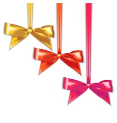 Set of elegant silk color bows vector