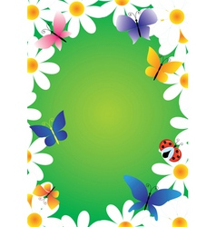 Camomiles and butterflies vector frame vector