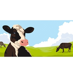 Cows with grass vector