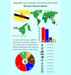 brunei darussalam infographics for presentation vector image vector image