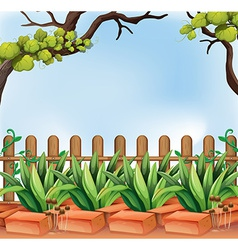 A backyard with a fence vector
