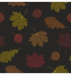Seamless autumn pattern from skeletons of leaves vector