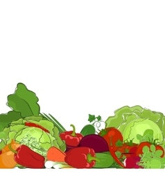 Fresh raw vegetables vector