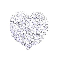 Blueberry heart shape vector image