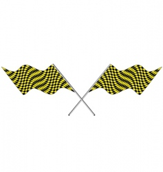 Checked flags vector