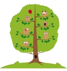 Funny owls sitting in a tree vector