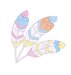 Beauty feathers style with decoration design vector