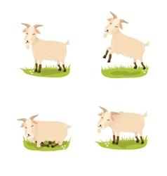 Set of cute goats vector image
