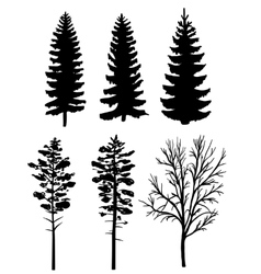 Silluettes of forest trees vector