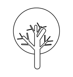 Tree plant icon vector