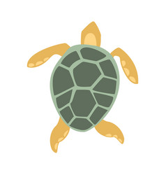 yellow and grey turtle part of mediterranean sea vector image