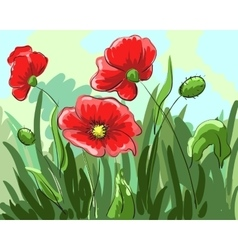 Red poppies painted by hand grow on the field with vector