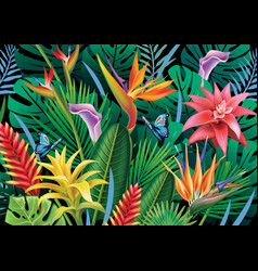 background with exotic tropical flowers vector image vector image