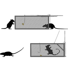 Humane rat trap vector