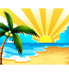 A beautiful beach with a coconut tree vector image vector image