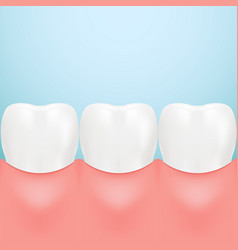 Dental care tooth isolated on a background vector