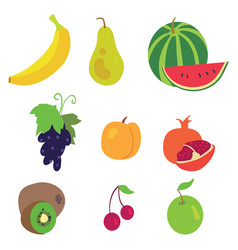 fruit pattern on a white background vector image