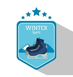 Ice skate and winter sport design vector image vector image