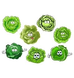 Cartoon crunchy green cabbage vegetables vector image vector image