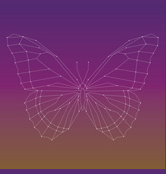 Geometric linear butterfly vector