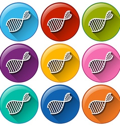 Buttons with dna symbols vector