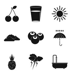 fruit berry icons set simple style vector image