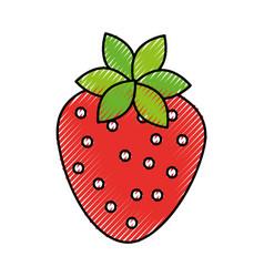 sweet strawberry fruit fresh raw food healthy vector image
