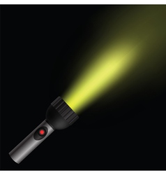torch light vector image