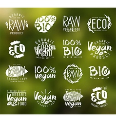 Raw vegan labels badges and design elements vector image