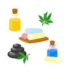 Set of spa salon accessories - hot stones massage vector