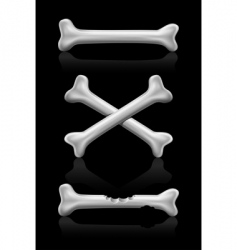 Bones crossed icon vector