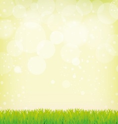 grass and smooth green background vector image