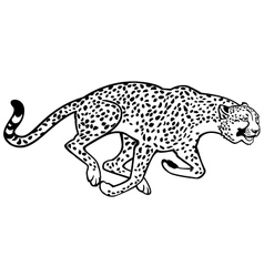 Running cheetah black and white vector