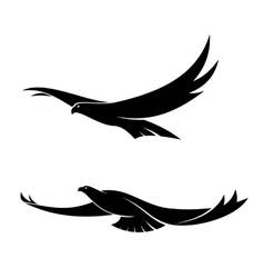 Two graceful flying birds vector