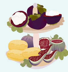 exotic fruits and biscuits on a plate vector image vector image