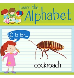 Flashcard alphabet c is for cockroach vector