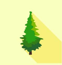 pine tree icon flat style vector image
