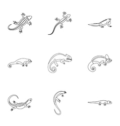 Types of iguana icons set outline style vector
