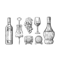 Wine set bottle glass corkscrew barrel bunch vector