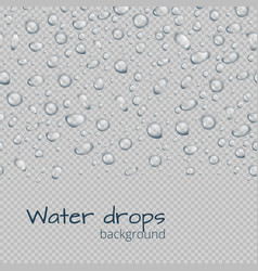 Border with raindrops vector