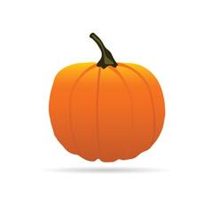 Pumpkin on a color for halloween vector